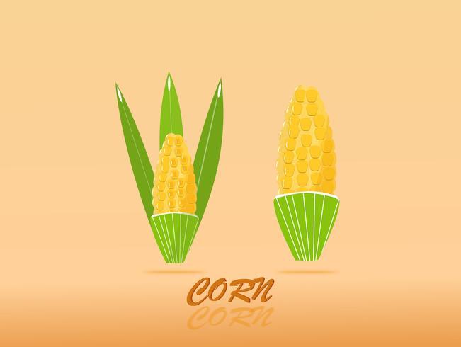 Design di alta qualità dolce d'oro di mais con bellezza colorata. segno di illustrazione vettoriale.