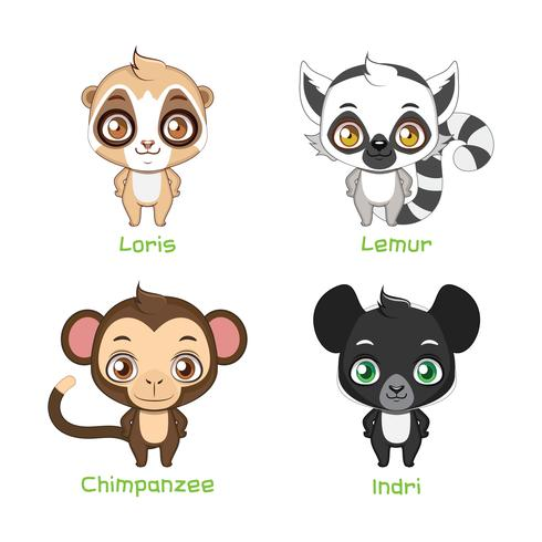 Set of primate illustrations