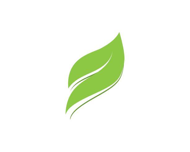 Logotipos de ecología de hoja de árbol verde.