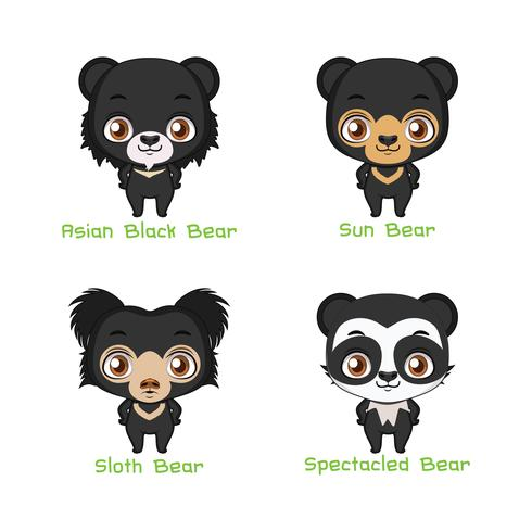 Set di specie di orso nero colorato vettore