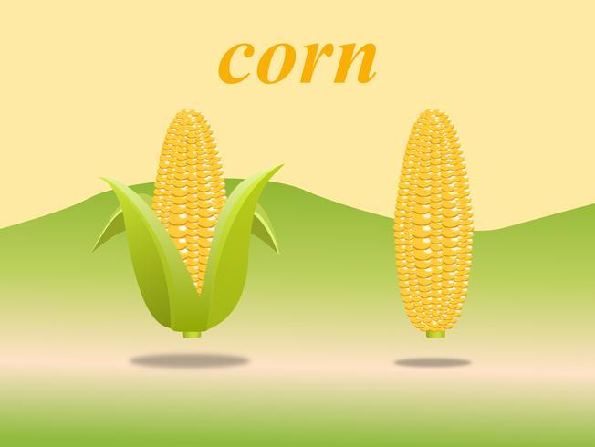 Diseño de alta calidad dulce dorado de maíz con belleza colorida. ilustración vectorial signo.