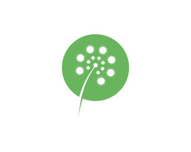 Dandelion flower logo vector template  vector