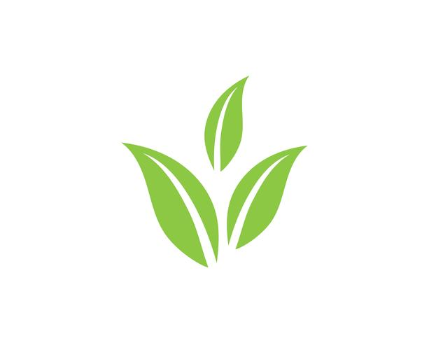 Logotipos de ecología de hoja de árbol verde. vector
