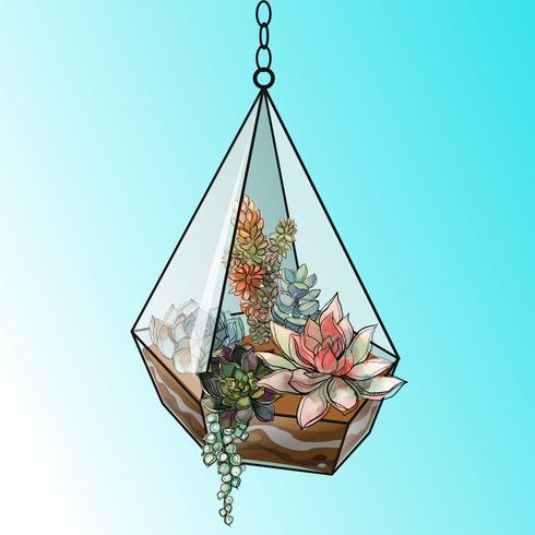 Composizione floreale di piante grasse in un acquario di vetro geometrico. Vettore. vettore