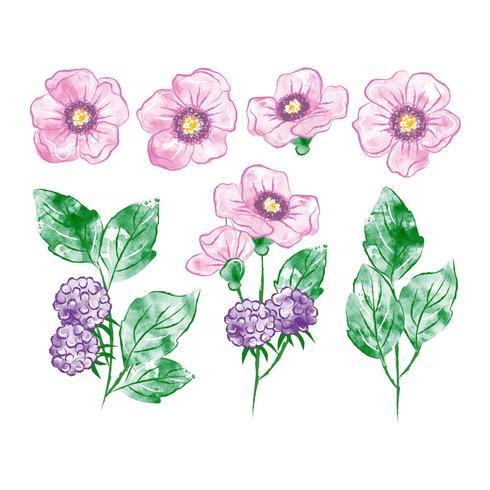 Elementos botânicos em aquarela