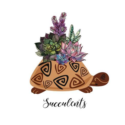 Een boeket van vetplanten in een bloempot in de vorm van een schildpad. Afbeeldingen en aquarel vlekken. Vector