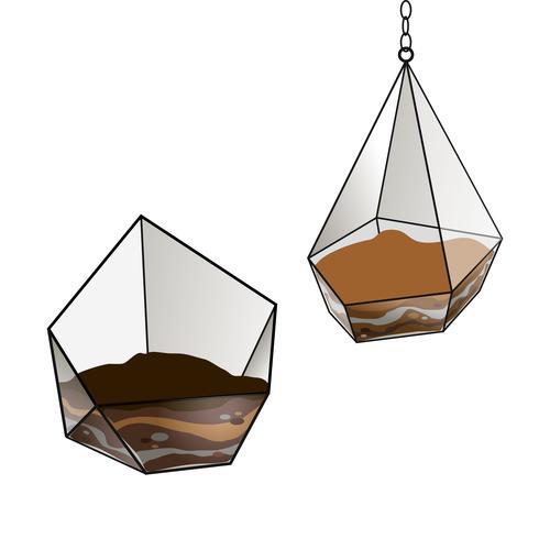 Geometrisch glazen terrarium voor vetplantenbloemen. Floristische. Het Florarium voor bloemen .Vector.