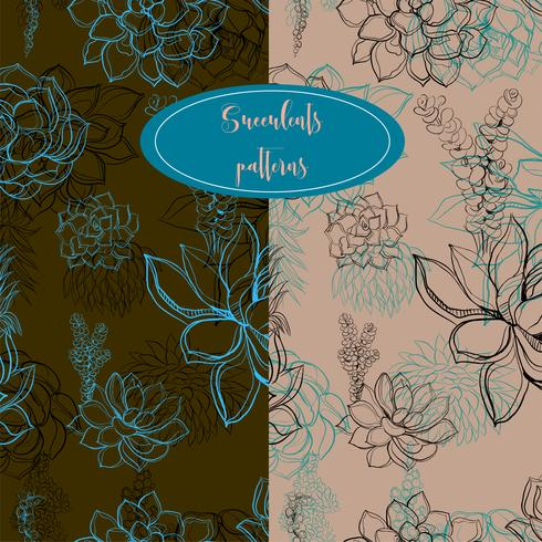 Set of seamless patterns. Succulents. Graphics. Vector.