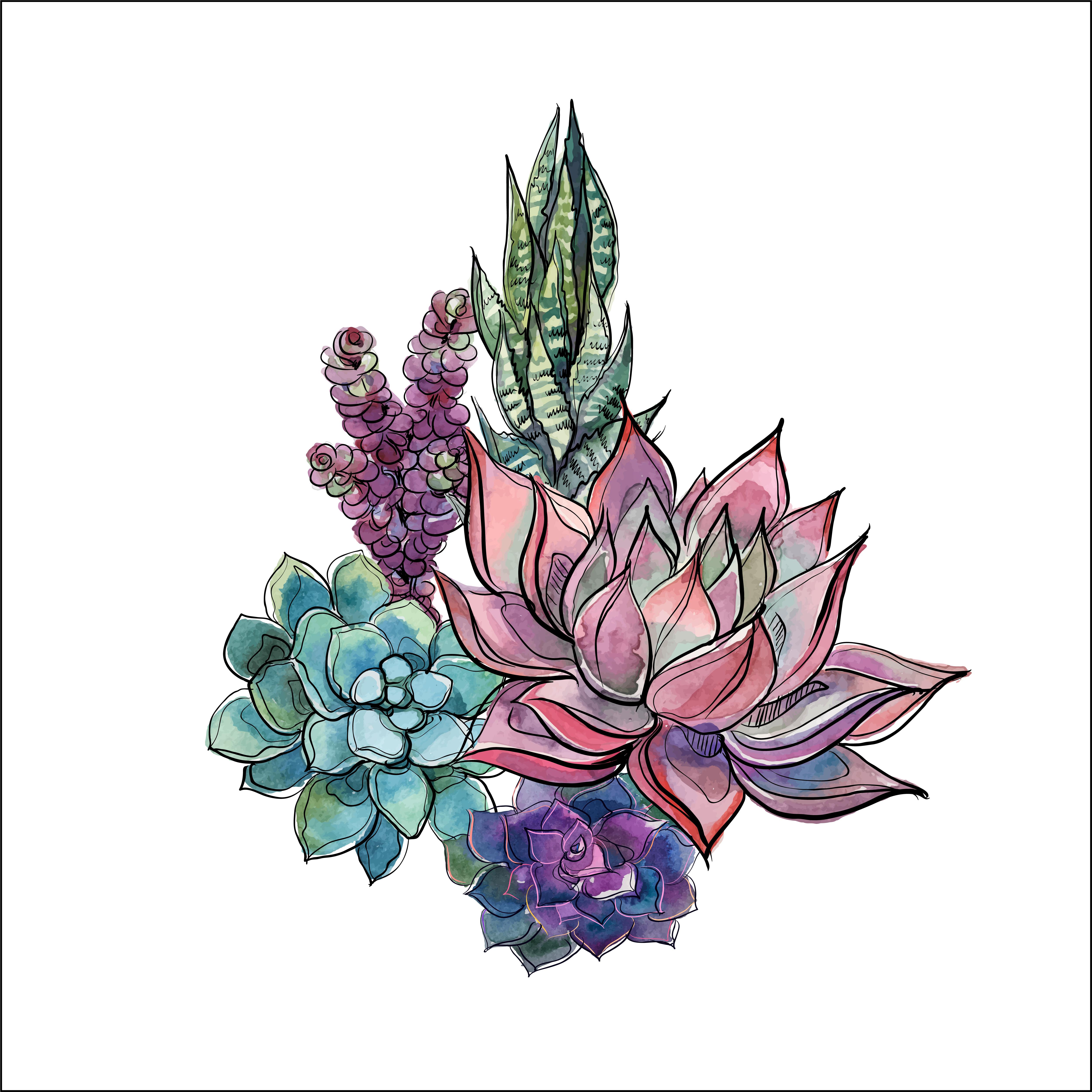 Bouquet Of Succulents. Flower Arrangement For Design