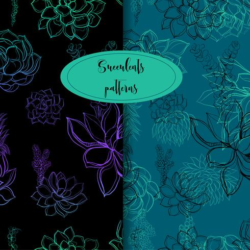Set of seamless patterns. Succulents. Graphics Vector illustration.