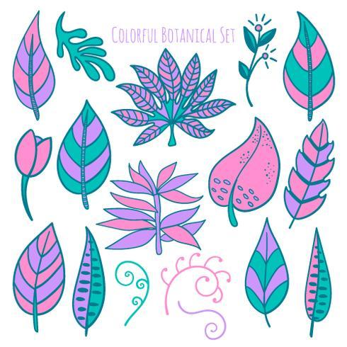Vector dibujado a mano elementos botánicos