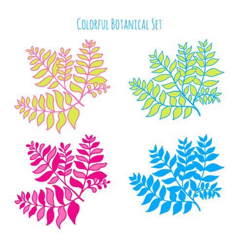 Vector hand drawn botanical elements