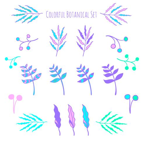 Vector hand getrokken botanische elementen
