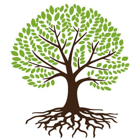 träd med rötter
