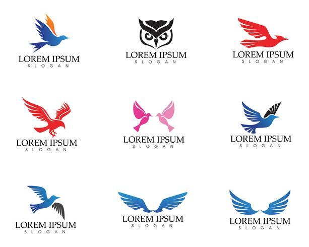 Wings bird sign plantilla abstracta iconos aplicación