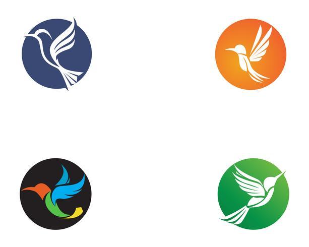 Hummingbird icon logo och symboler mall vektor