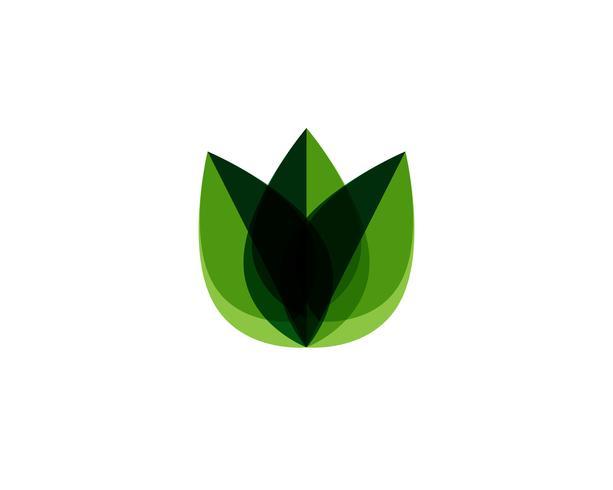 foglia verde natura logo e simbolo modello vettoriale