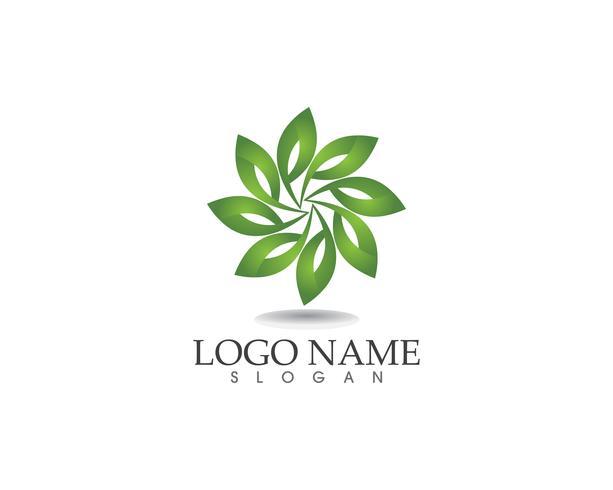 blad groene natuur logo en symbool sjabloon Vector