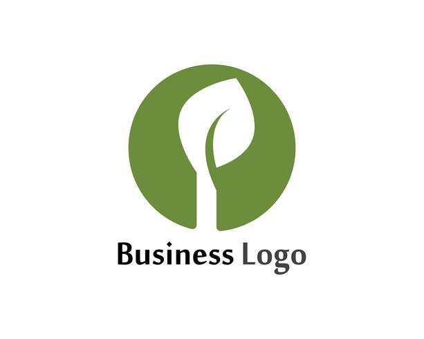 Tree Leaf Vector icon Illustratie ontwerpsjabloon