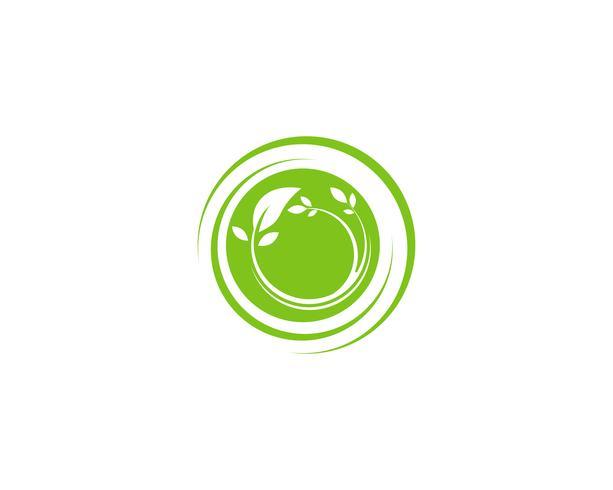 blattgrün natur logo und symbol vorlage Vektor