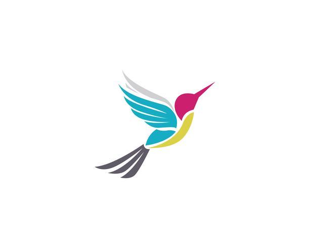 Vector de plantilla de logotipo y símbolos de icono de colibrí