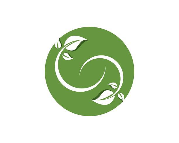 hoja verde naturaleza logotipo y símbolo plantilla vector