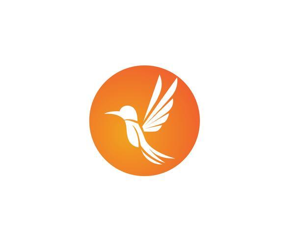 Colibri icône logo et symboles template vecteur