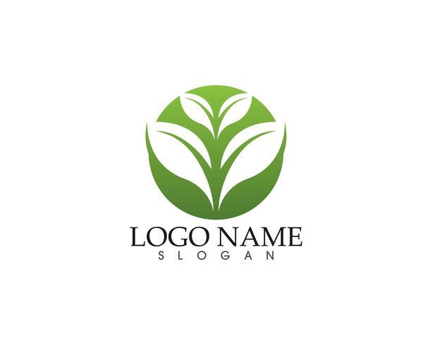 Ekologi vektor ikon logotyp och symbol mall