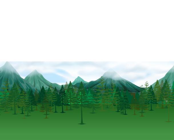 Natur scen med tallar och berg