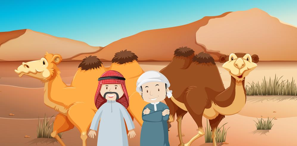 Två arabiska män och kameler i öknen