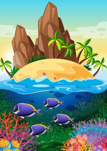 Scen med ö och liv under vattnet