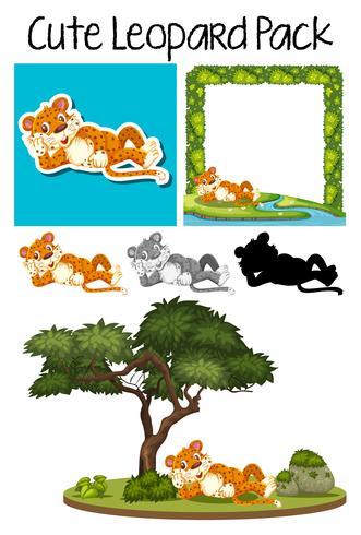 Un paquete de guepardo