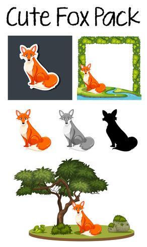 A pack of cute fox