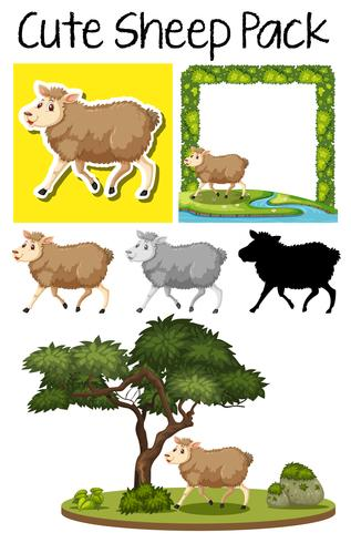 A pack of cute sheep