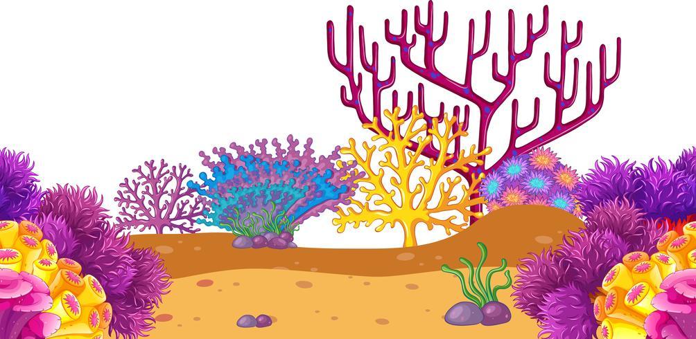 Uno sfondo di corallo sott'acqua