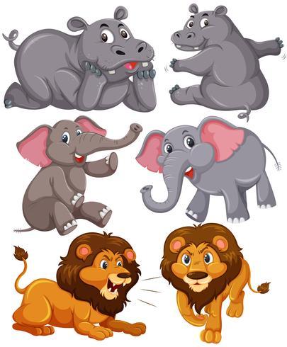 Set av afrikanska djur