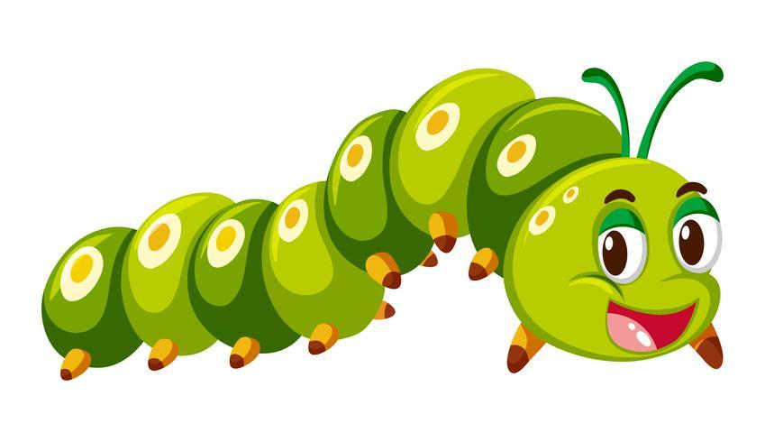 Lagarta verde rastejando no fundo branco vetor