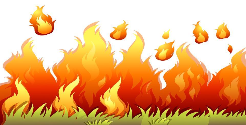 Un incendio boschivo isolato su sfondo bianco vettore