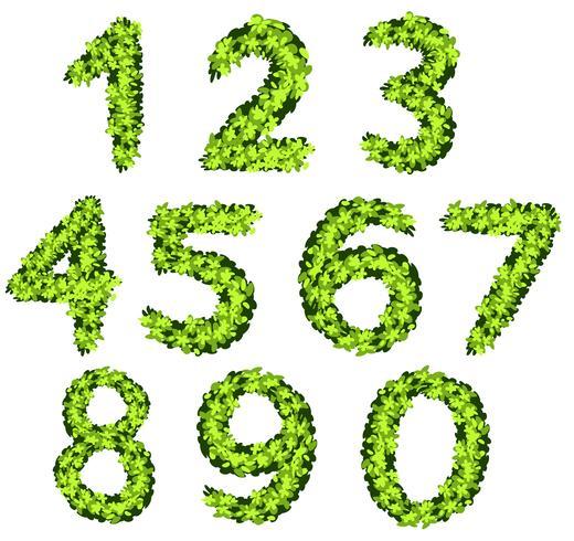 Progettazione di font per numeri con texture erba