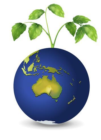 Uma planta acima do planeta Terra