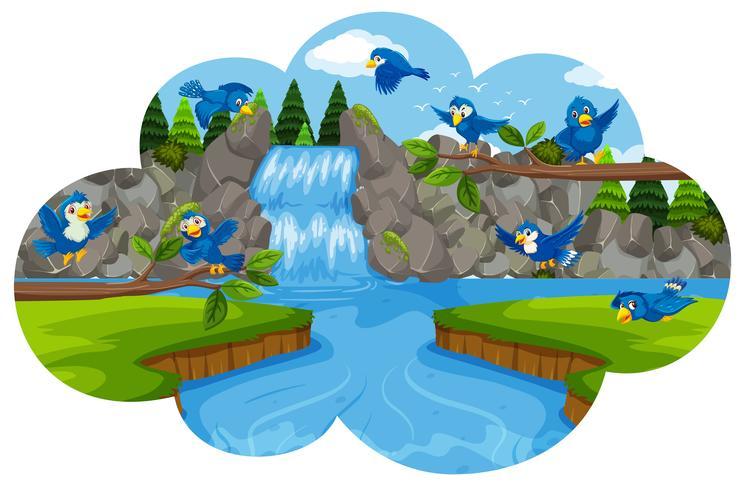 Fågel vid vattenfallet