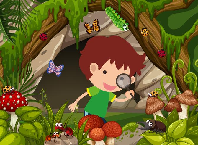 Ragazzo che guarda gli insetti nella foresta