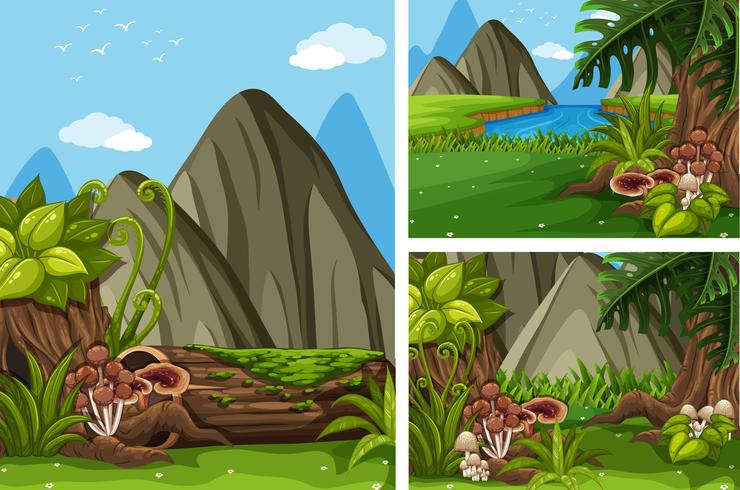 Three forest scenes with trees and mushrooms