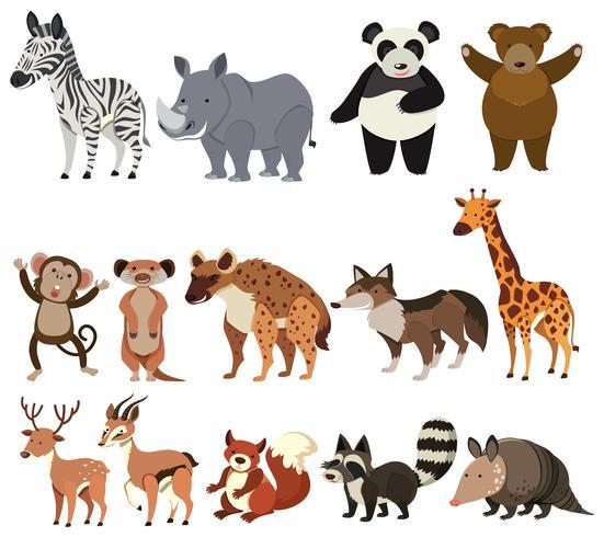 En uppsättning av djur på vit bakgrund