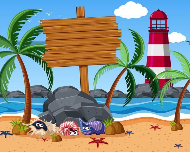 Segno di legno sulla spiaggia con stelle marine e granchi eremiti