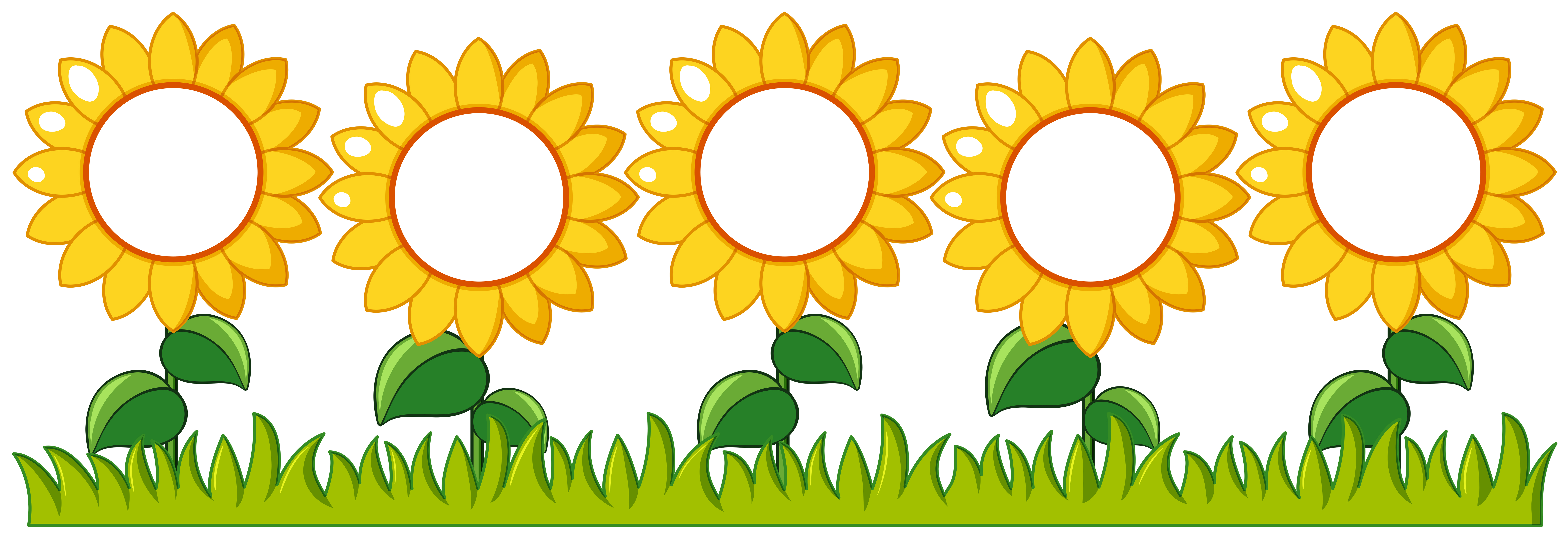 Sunflowers garden with writing space - Download Free ...