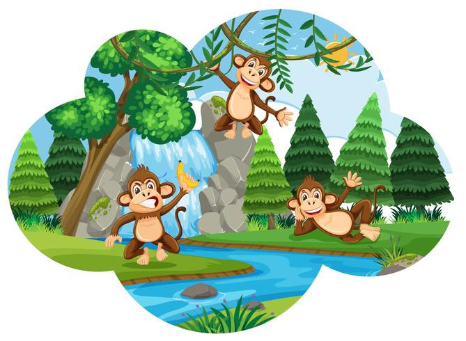 Brutale apen in bossen