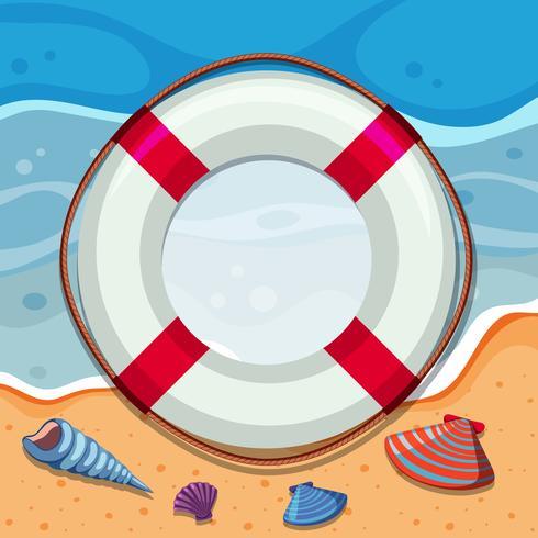 Borde redondo con conchas en la playa