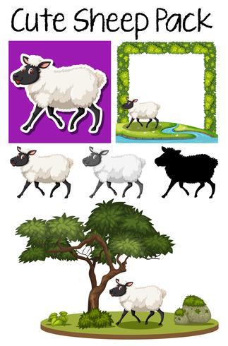 Pack of cute sheep