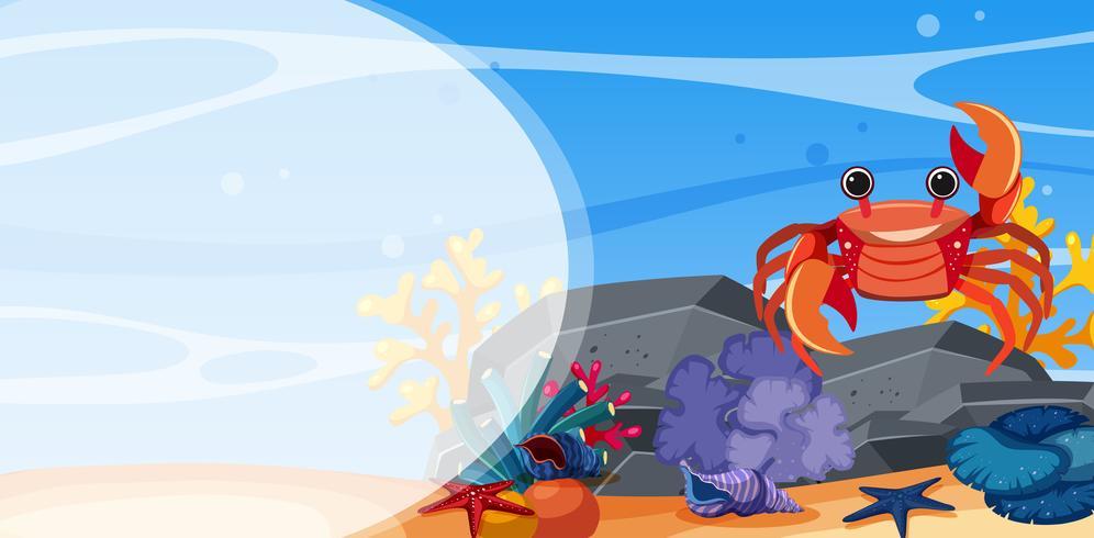 Underwater scene with crab on rock